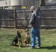 Obedience-First Training Approach