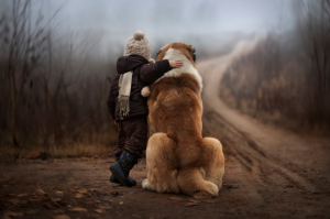 Develop the Bond with Your Dog
