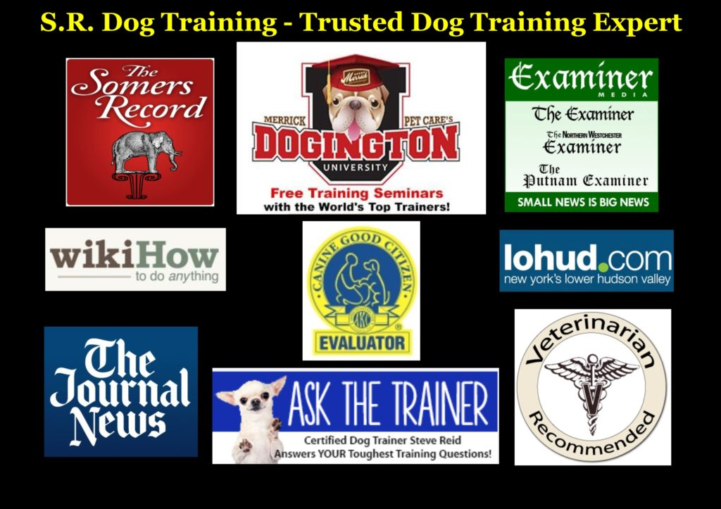 Dog Training Westchester NY, Putnam NY, Connecticut